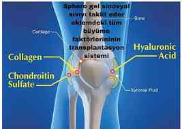 KNEE İNJECTİONS